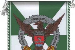 Associação-Humanitária-dos-Bombeiros-Voluntários-de-Amarante-Portugal-Amarante