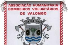 Associação-Humanitária-dos-Bombeiros-Voluntários-de-Valongo-Portugal-Valongo_Wimpel_1