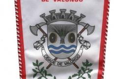 Associação-Humanitária-dos-Bombeiros-Voluntários-de-Valongo-Portugal-Valongo_Wimpel_3