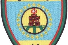 Bombeiros-Distrito-de-Santarém-Portugal