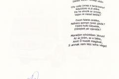Hivatásos-Önkormányzati-Tüzoltósága-Zalaegerszeg-Ungarn_Weihnachtsgruß-2010_2