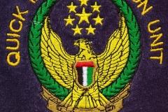 Quick-Intervention-Abu-Dhabi-VAR_Emblem_1