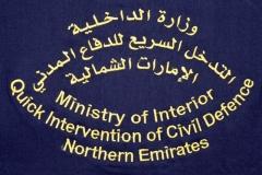 Quick-Intervention-Northern-Emirates-VAR_Emblem_2