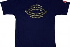 Quick-Intervention-Northern-Emirates-VAR_T-Shirt_2