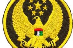 Quick-Intervention-VAR_Emblem_1