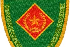 Dân Quân Tự Vệ, Vietnam