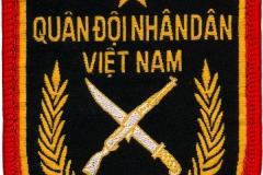 Quân Đội Nhân Dân Việt Nam, Vietnam_1