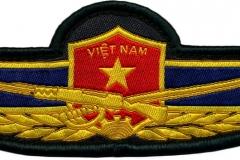 Quân Đội Nhân Dân Việt Nam, Vietnam_2
